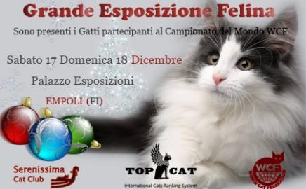 Esposizione di Empoli, dicembre 2016