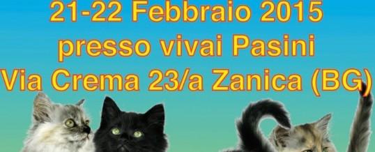 Mondiale a Zanica, 21-22 febbraio 2015