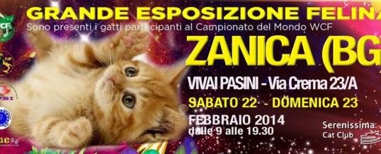 Zanica (BG): 22 e 23 febbraio 2014